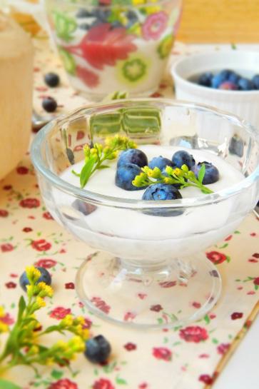 0499. Raw jogurt z mladého kokosu_03